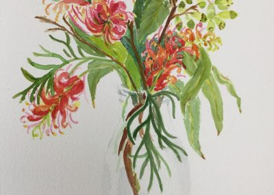 Grevilleas and Gumnuts